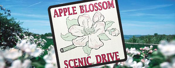 apple blossom drive antique store